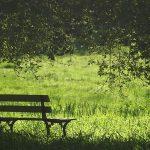 گذشته، تکهای از زندگی